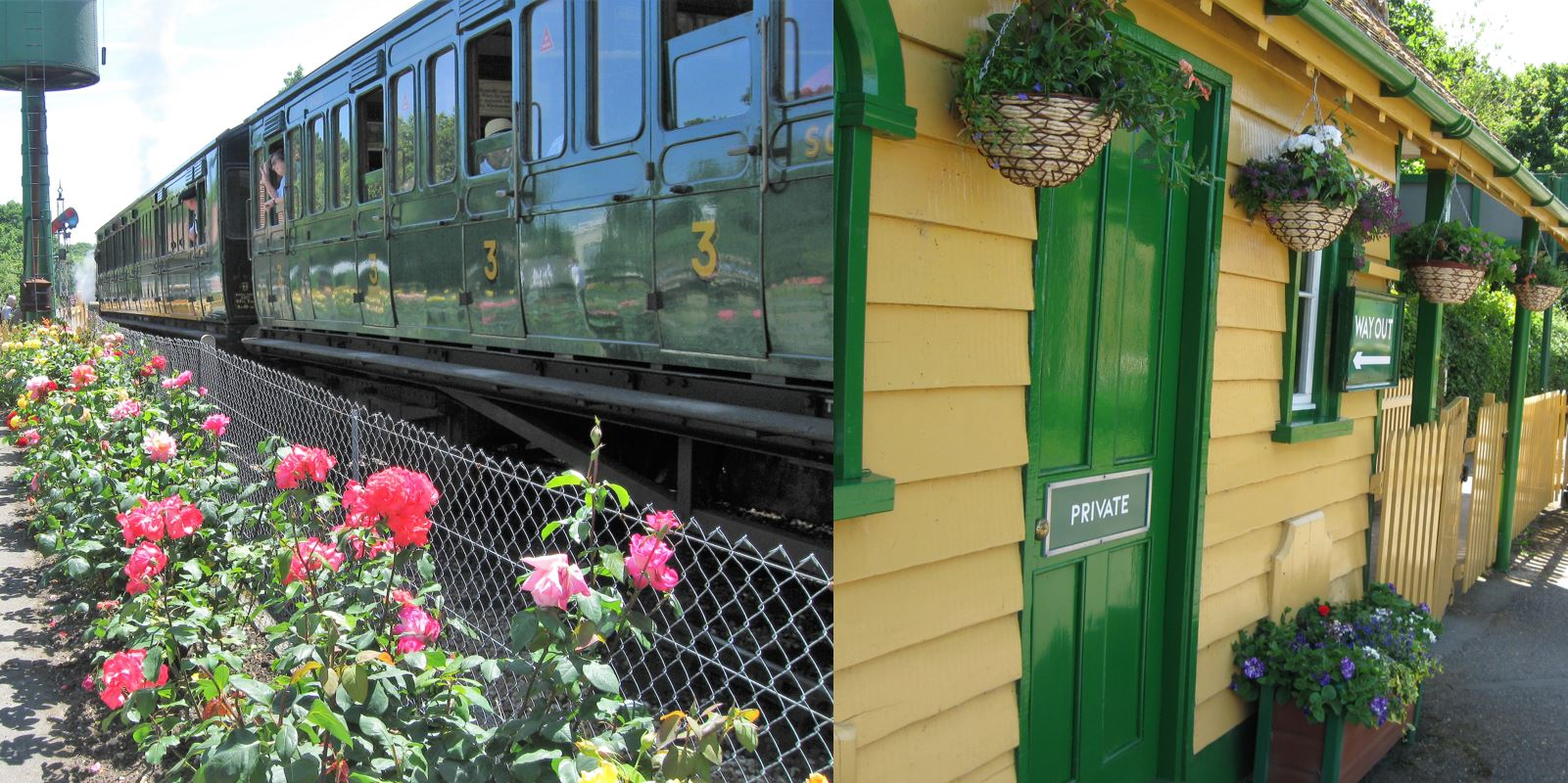 IW Steam Railway enters the Wight in Bloom Competition
